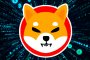 Just 24 hours after the alleged meme coin, Shiba Inu's decentralized